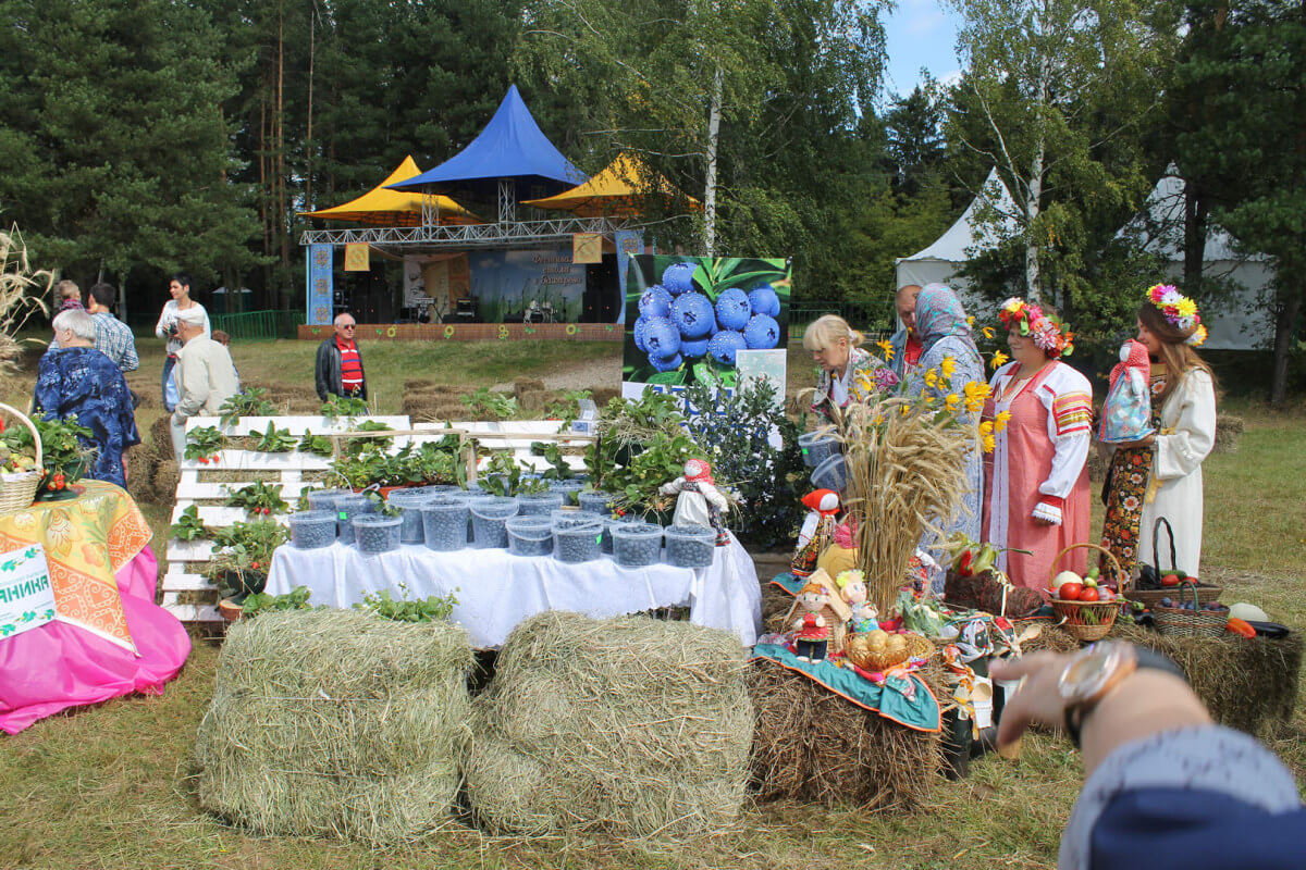 Фестиваль стола в Захарово 7