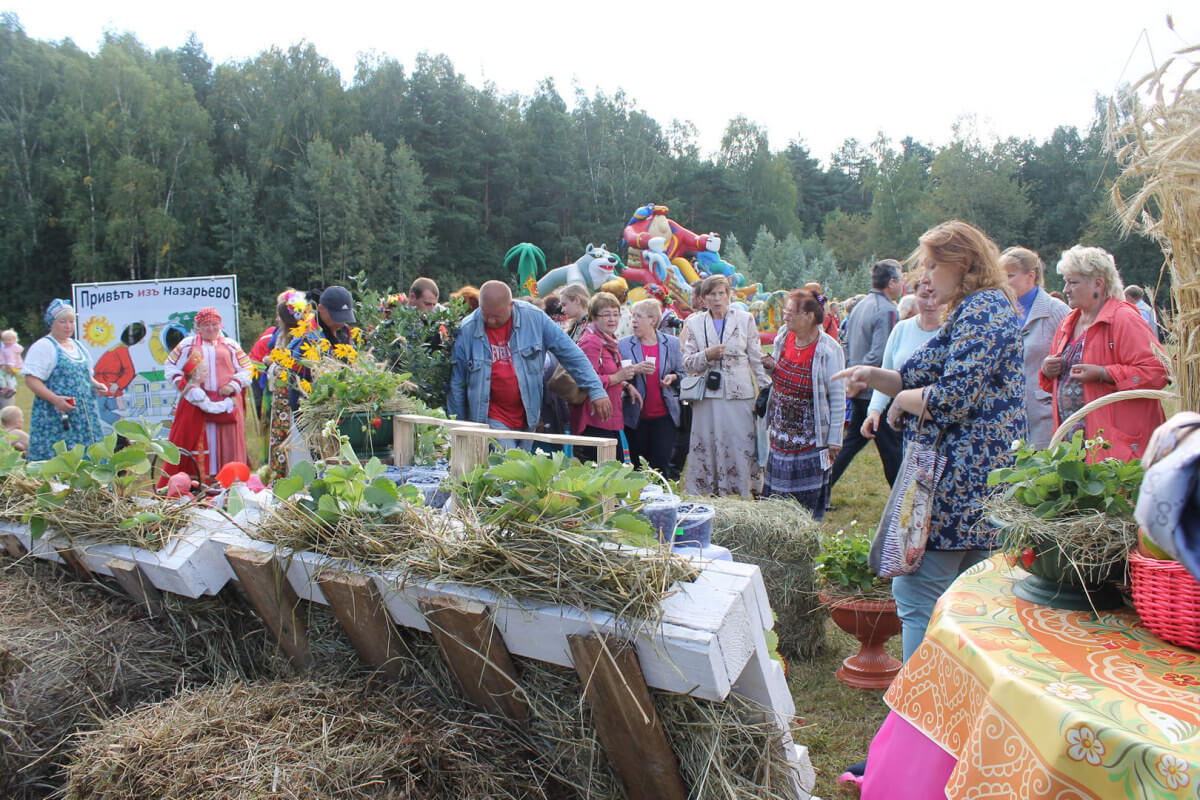 Фестиваль стола в Захарово 8
