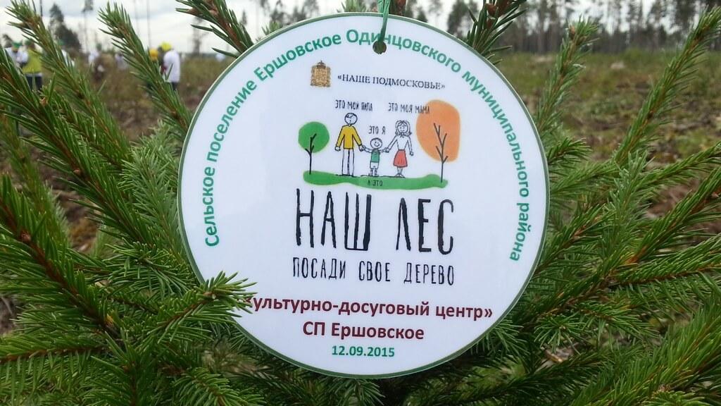 Наш лес. Посади своё дерево-2015