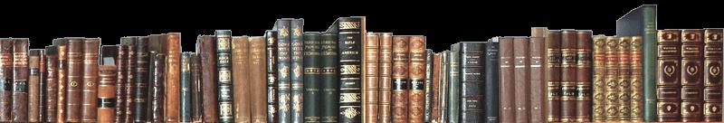 Электронная запись на оказание услуг библиотек