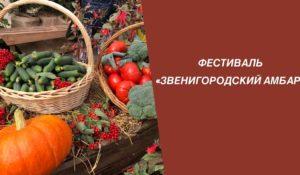 ФЕСТИВАЛЬ «ЗВЕНИГОРОДСКИЙ АМБАР»